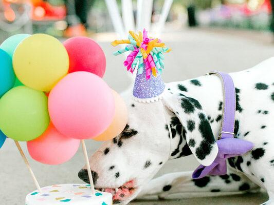 balloon decorations Houston